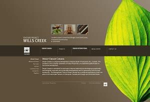 PAgina web de éxito diseño
